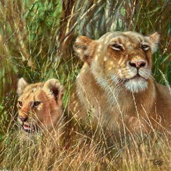 Proud Mum by Tony Forrest -  sized 16x16 inches. Available from Whitewall Galleries